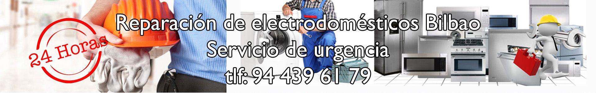 Reparación de Electrodomésticos Bilbao